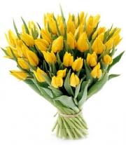 kwiaty_dm-t.jpg